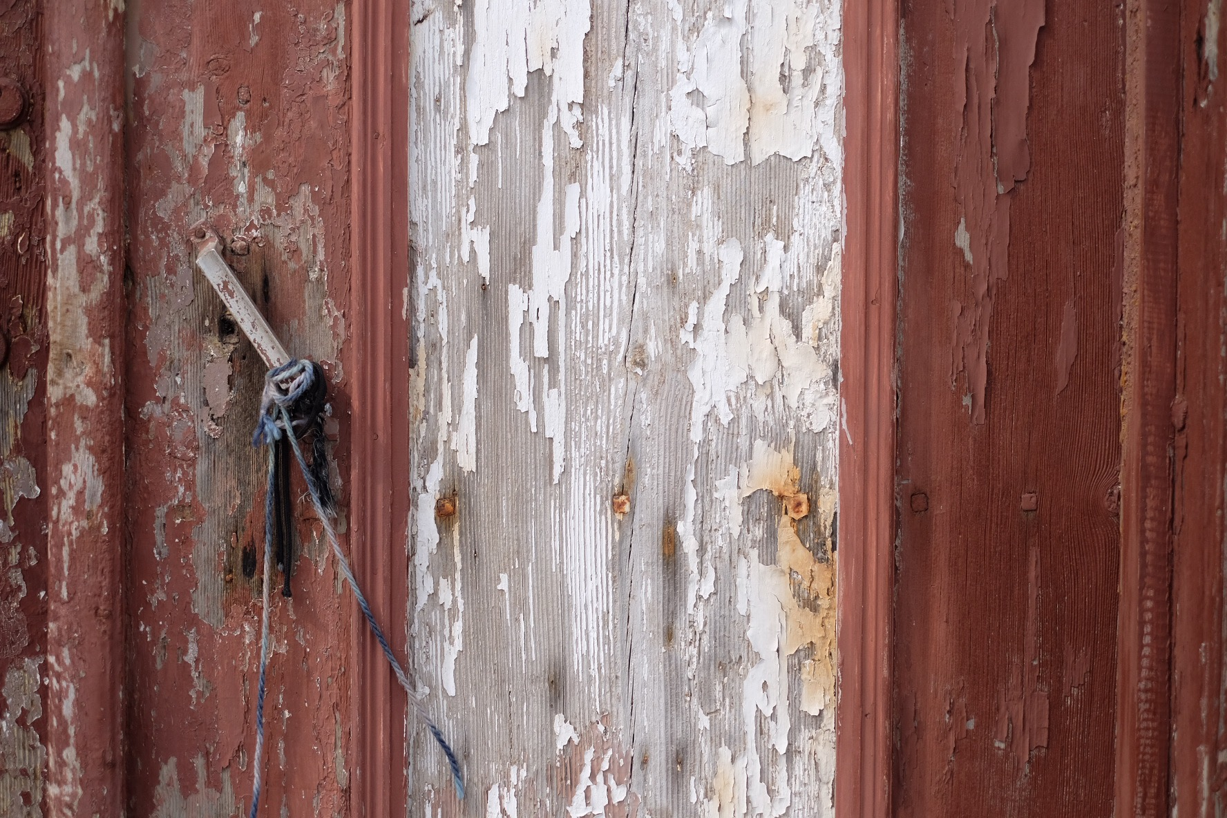 Painted wood door with the texture.